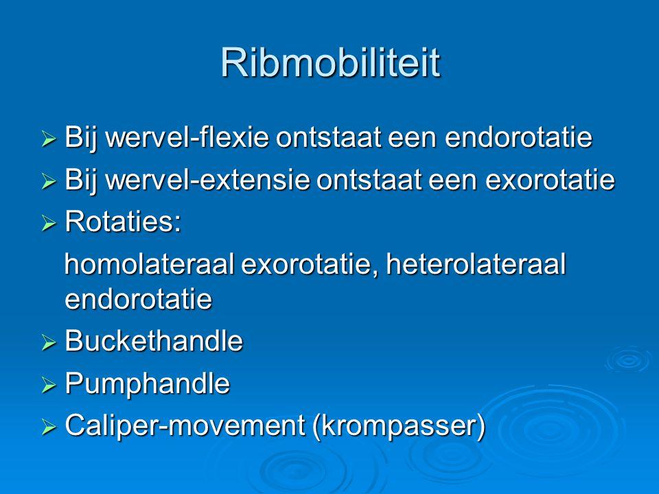 Ribmobiliteit Bij wervel-flexie ontstaat een endorotatie