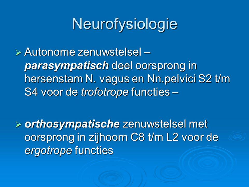 Neurofysiologie Autonome zenuwstelsel – parasympatisch deel oorsprong in hersenstam N. vagus en Nn.pelvici S2 t/m S4 voor de trofotrope functies –