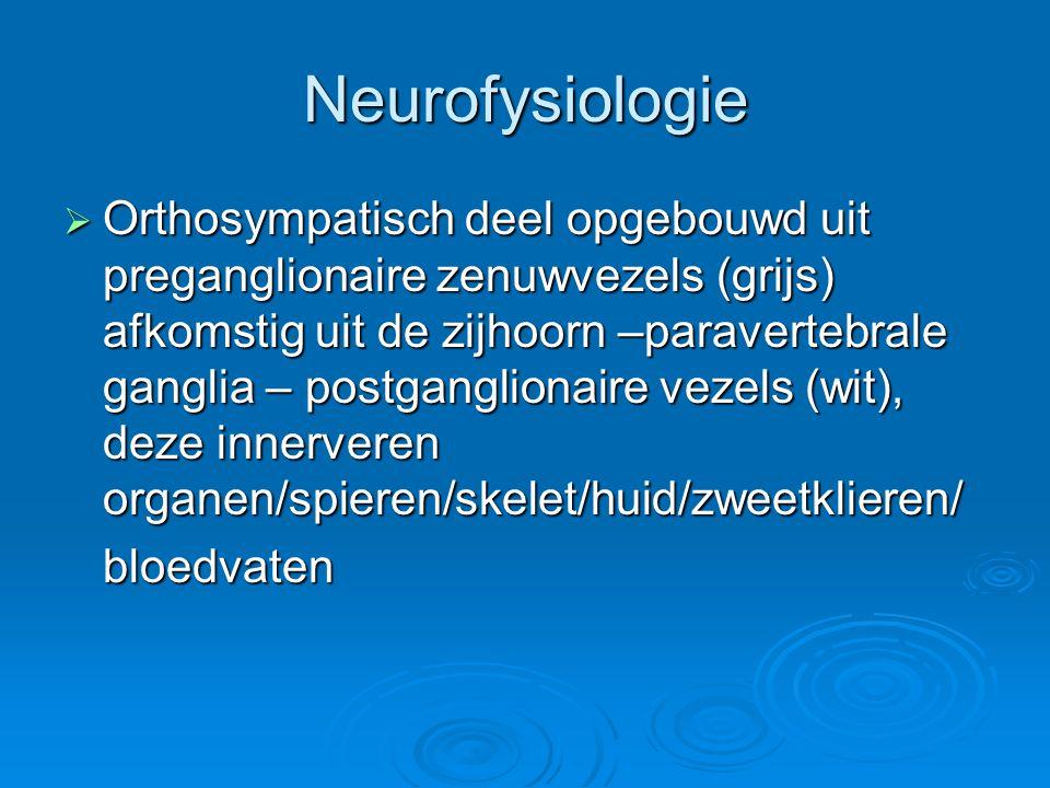 Neurofysiologie