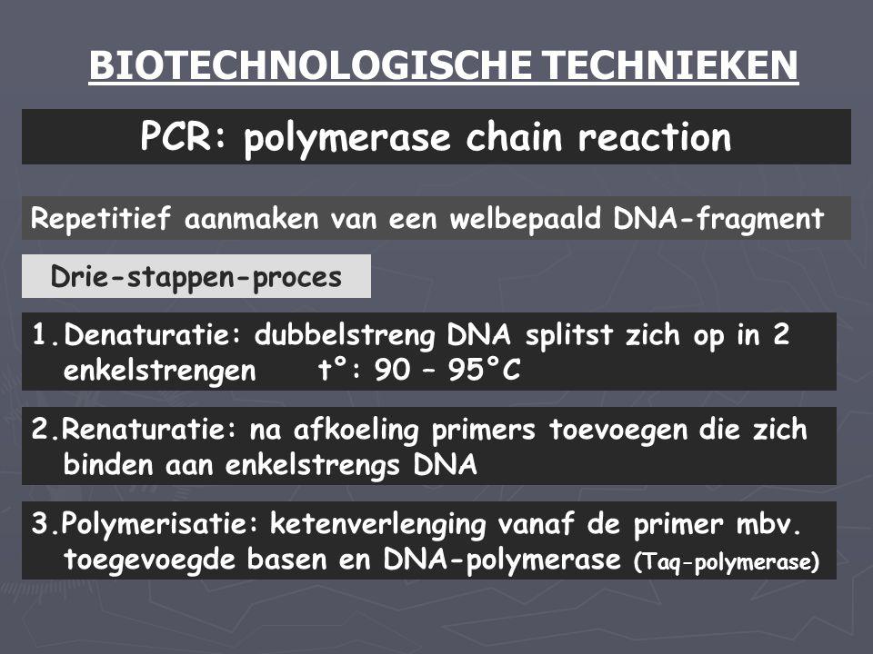 BIOTECHNOLOGISCHE TECHNIEKEN PCR: polymerase chain reaction