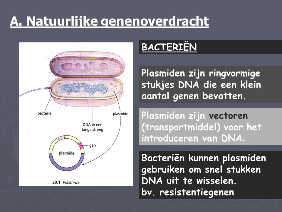 A. Natuurlijke genenoverdracht