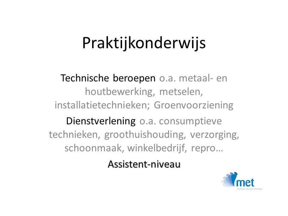 Praktijkonderwijs Technische beroepen o.a. metaal- en houtbewerking, metselen, installatietechnieken; Groenvoorziening.