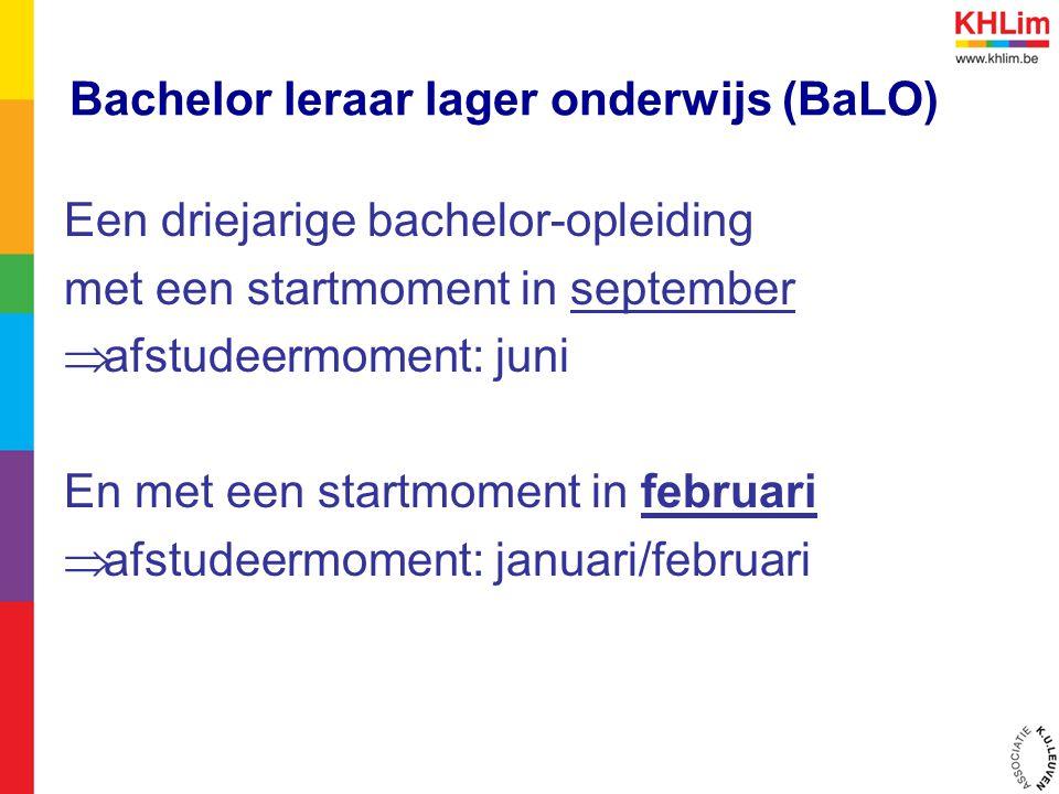 Bachelor leraar lager onderwijs (BaLO)