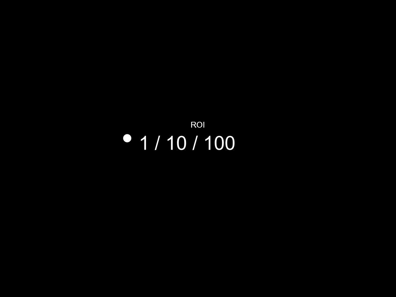 ROI 1 / 10 / 100