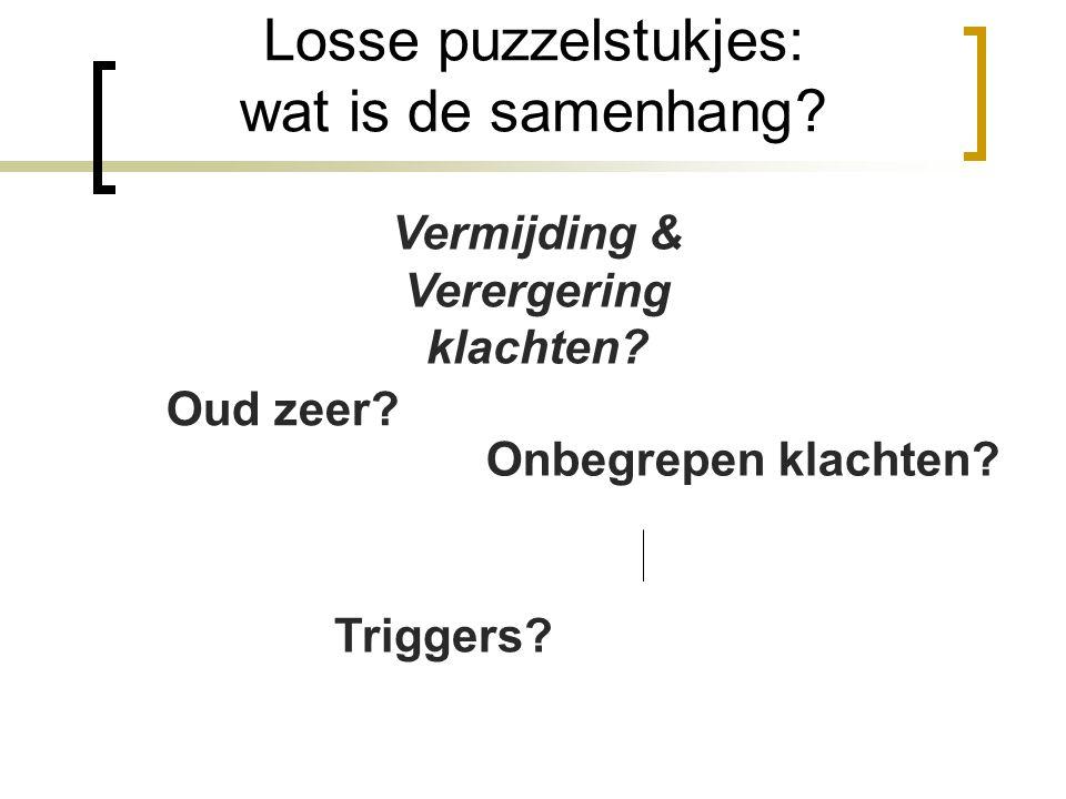 Losse puzzelstukjes: wat is de samenhang