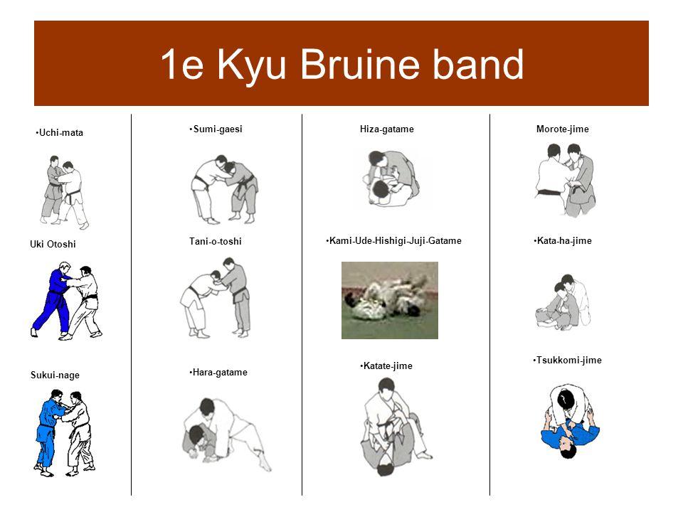 1e Kyu Bruine band Sumi-gaesi Hiza-gatame Morote-jime Uchi-mata