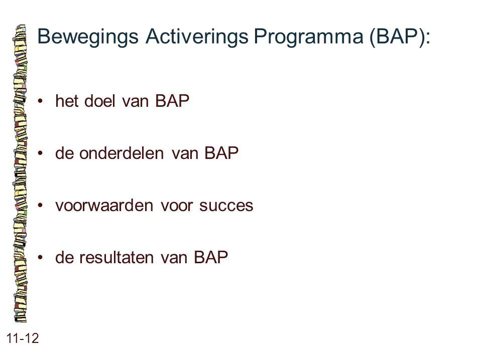 Bewegings Activerings Programma (BAP):