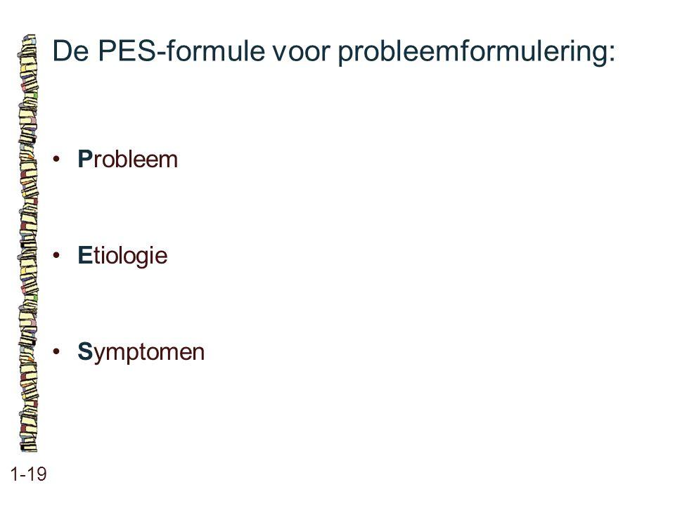 De PES-formule voor probleemformulering: