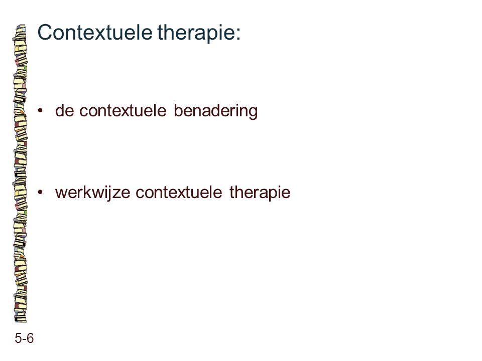 Contextuele therapie: