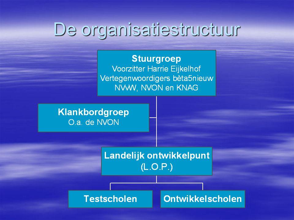 De organisatiestructuur