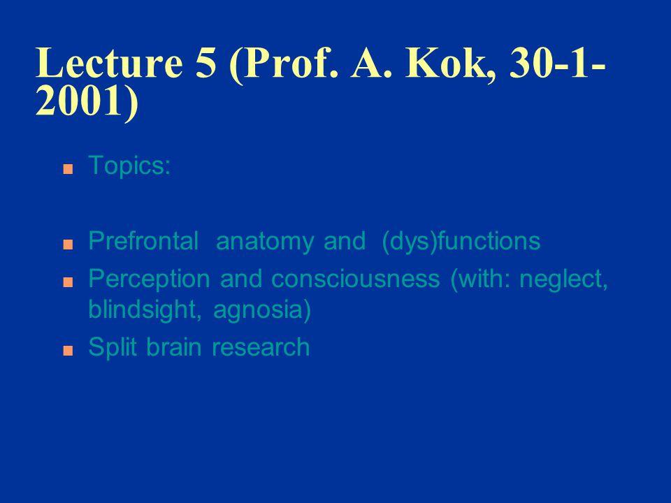 Lecture 5 (Prof. A. Kok, 30-1-2001) Topics: