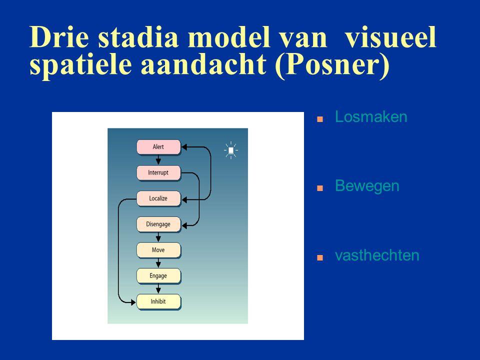 Drie stadia model van visueel spatiele aandacht (Posner)