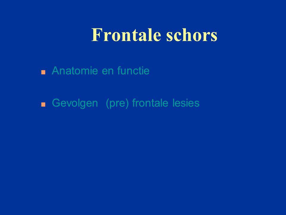 Frontale schors Anatomie en functie Gevolgen (pre) frontale lesies