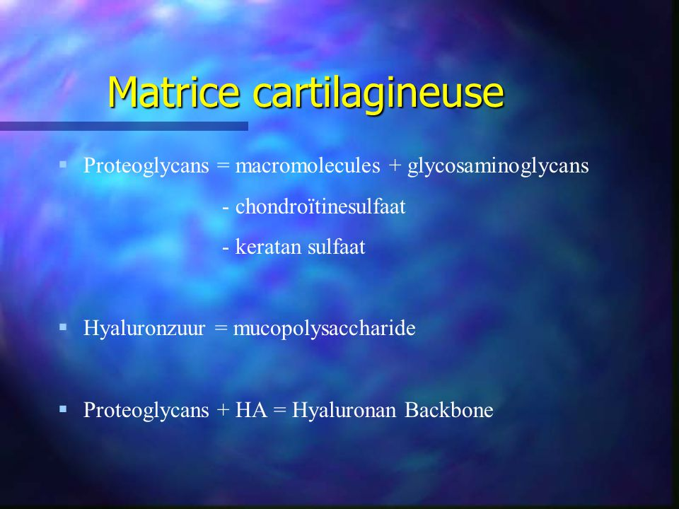 Matrice cartilagineuse