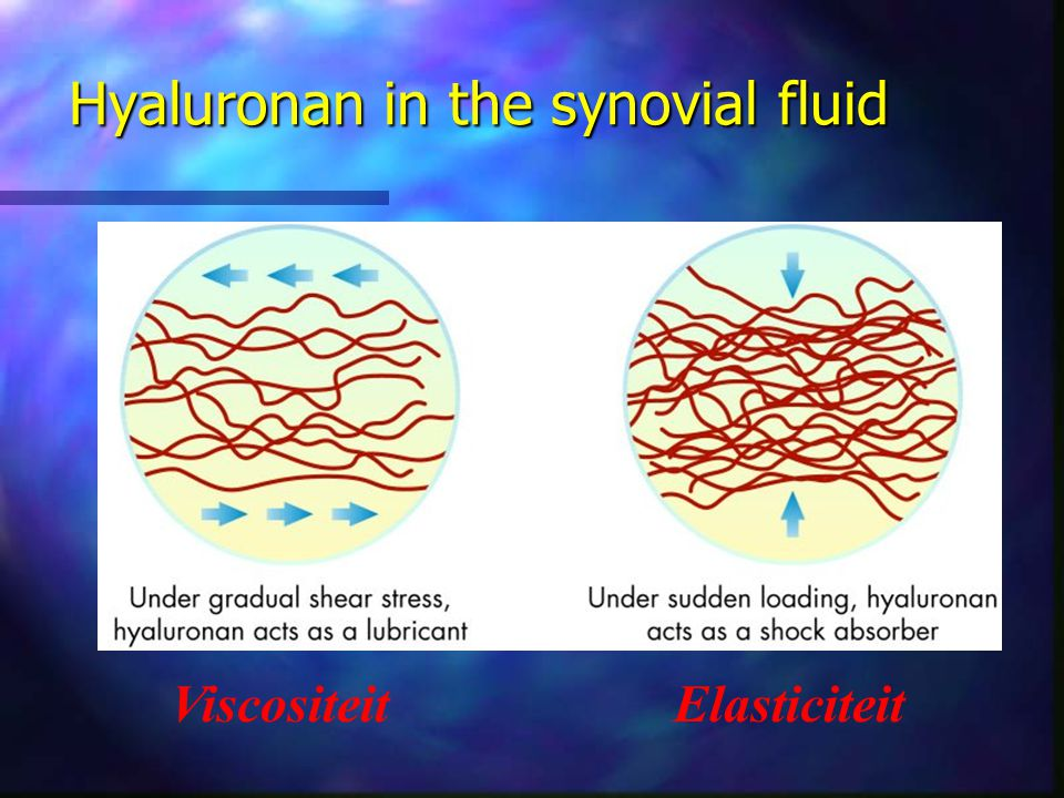 Hyaluronan in the synovial fluid