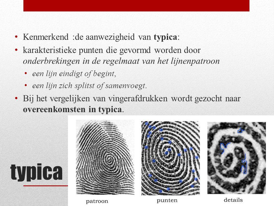 typica Kenmerkend :de aanwezigheid van typica: