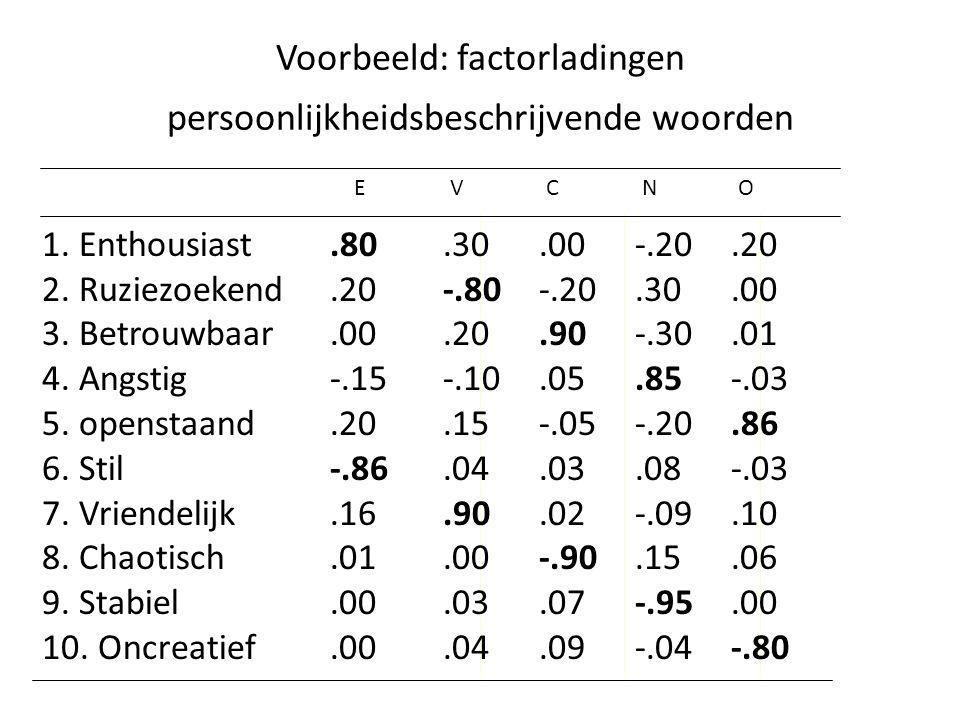 Voorbeeld: factorladingen persoonlijkheidsbeschrijvende woorden