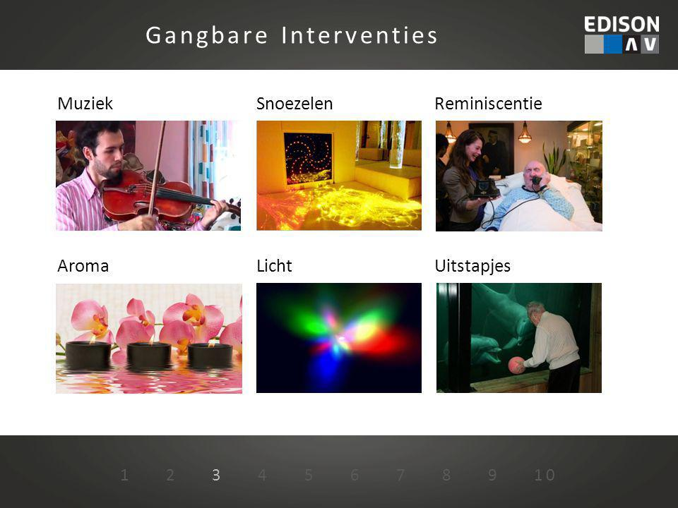 Gangbare Interventies