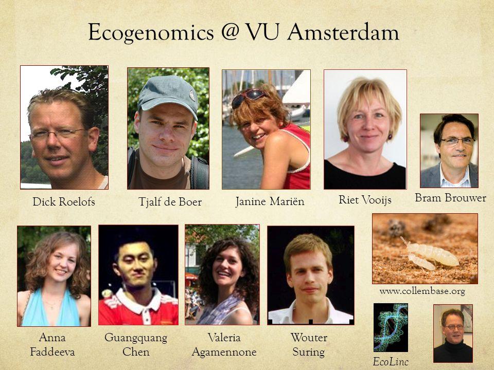 Ecogenomics @ VU Amsterdam