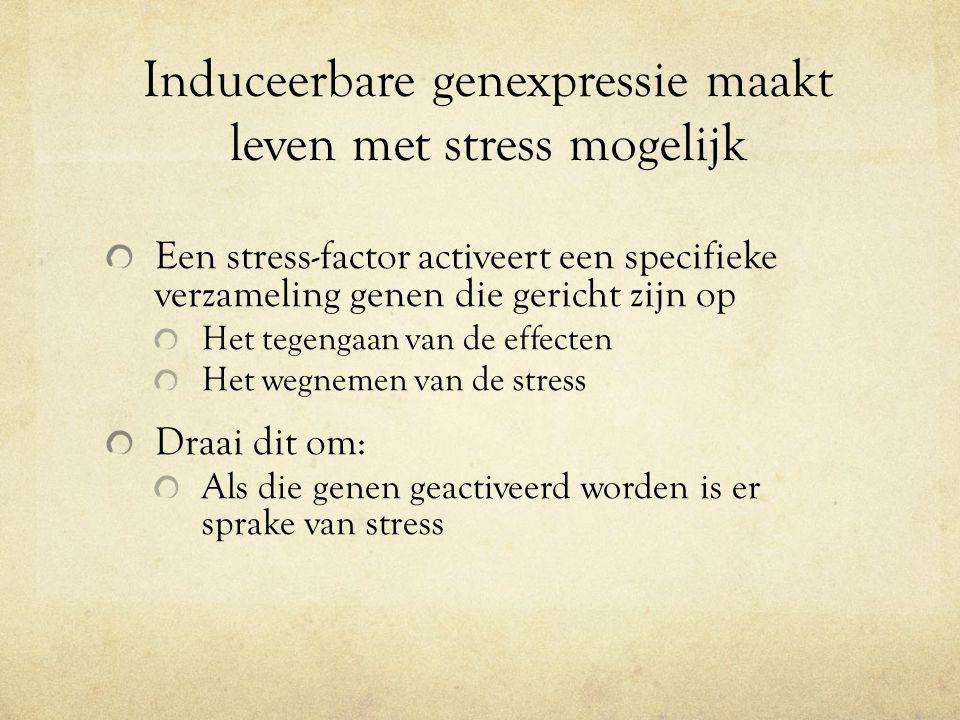 Induceerbare genexpressie maakt leven met stress mogelijk