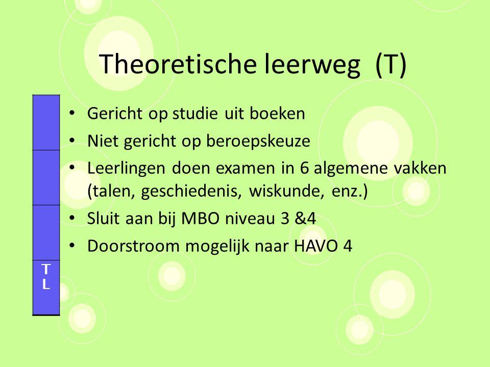 Theoretische leerweg (T)