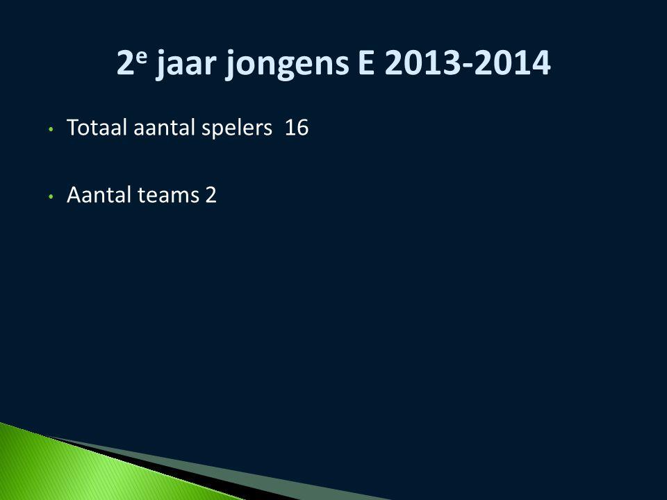 2e jaar jongens E 2013-2014 Totaal aantal spelers 16 Aantal teams 2