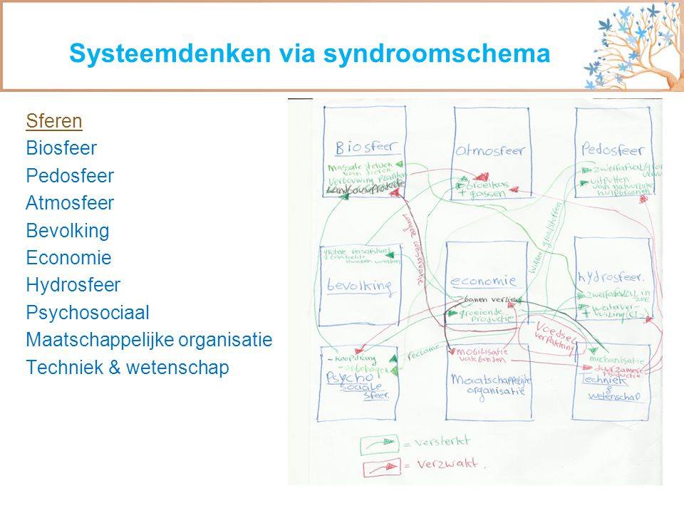 Systeemdenken via syndroomschema