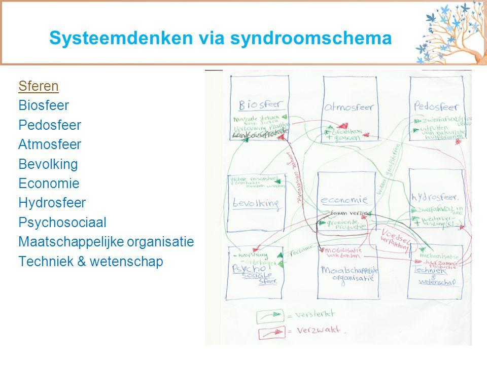 Systeemdenken via syndroomschema