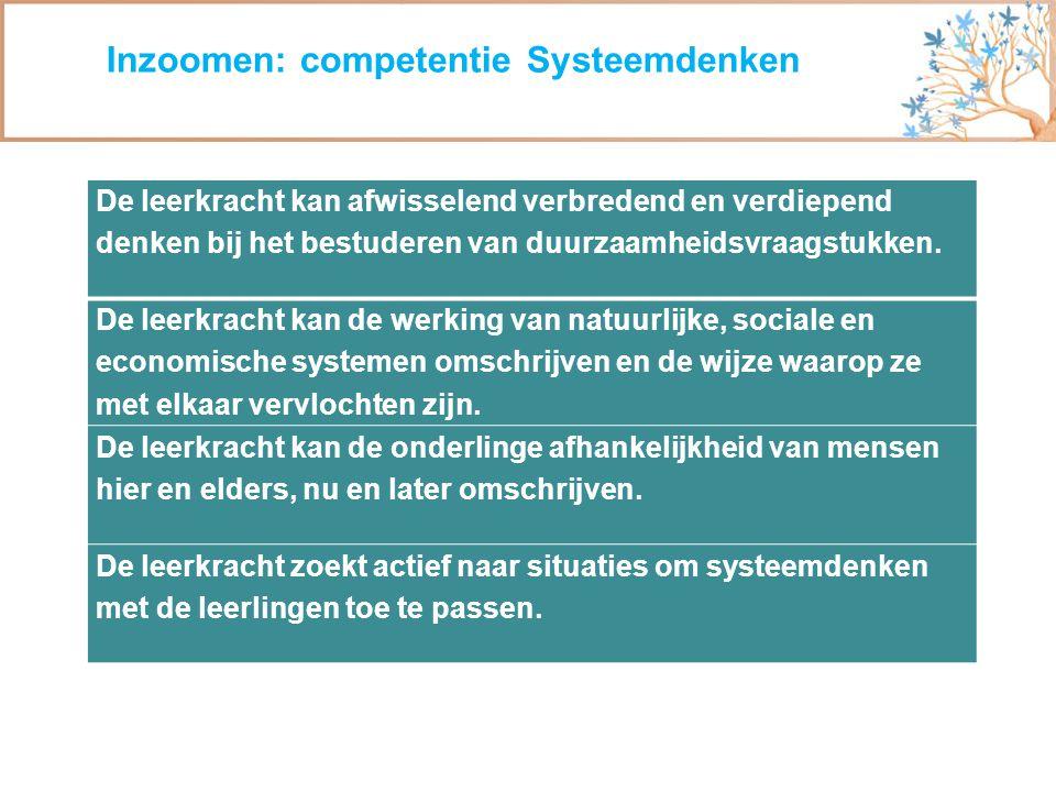 Inzoomen: competentie Systeemdenken