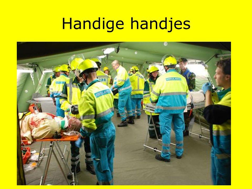Handige handjes