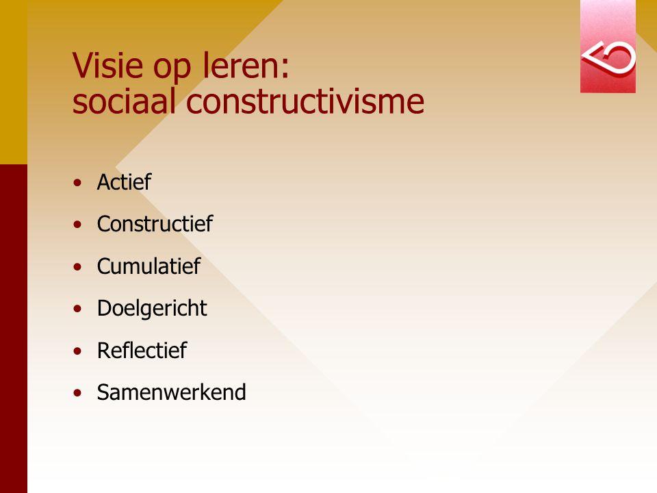 Visie op leren: sociaal constructivisme