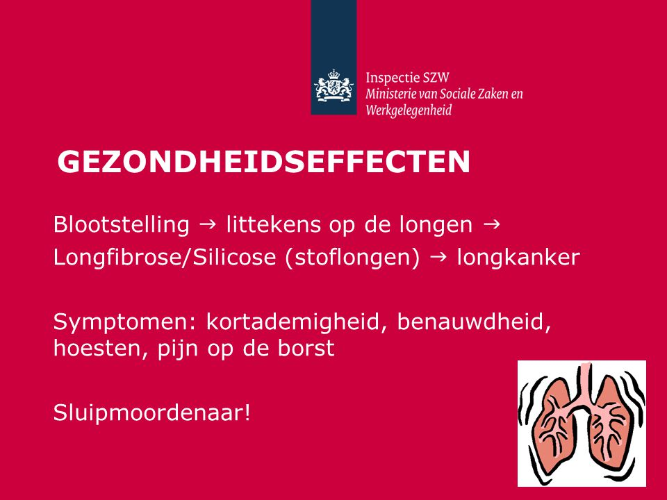Gezondheidseffecten Blootstelling  littekens op de longen 