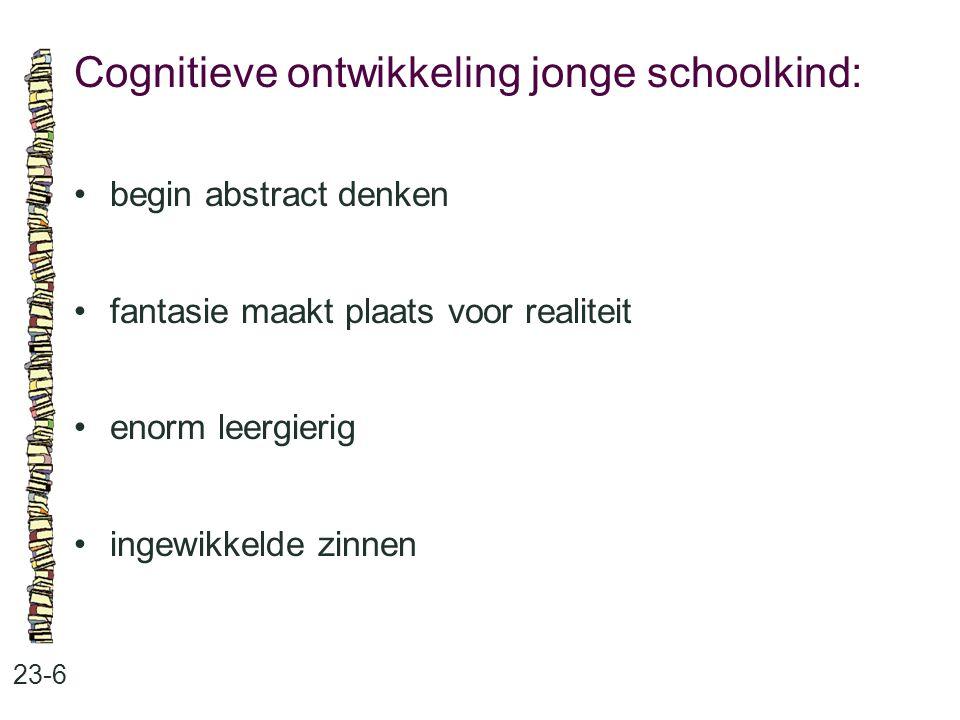 Cognitieve ontwikkeling jonge schoolkind:
