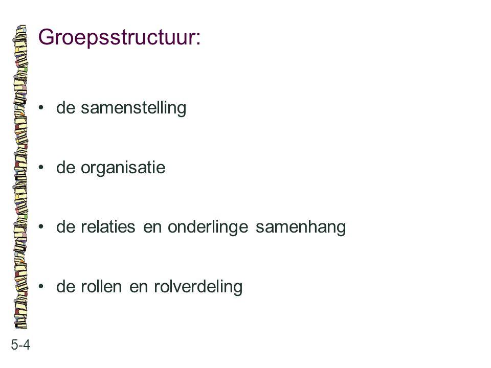 Groepsstructuur: • de samenstelling • de organisatie