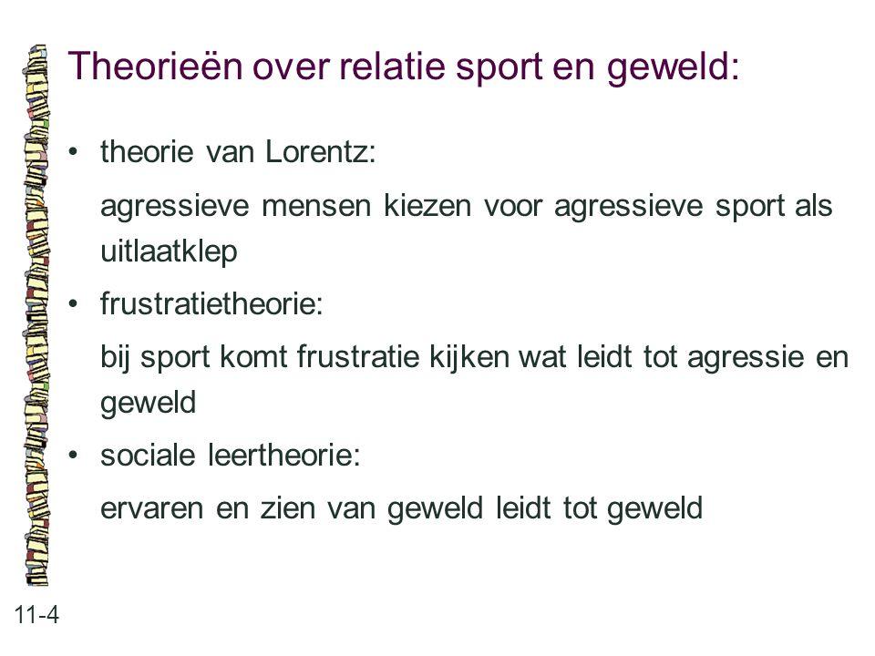 Theorieën over relatie sport en geweld: