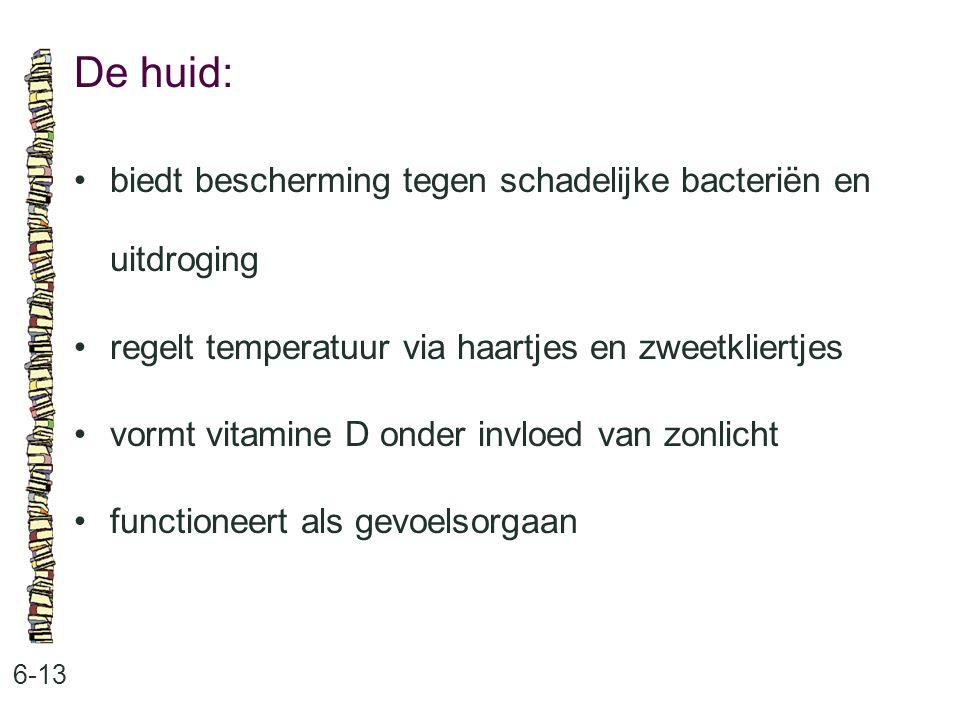 De huid: • biedt bescherming tegen schadelijke bacteriën en uitdroging
