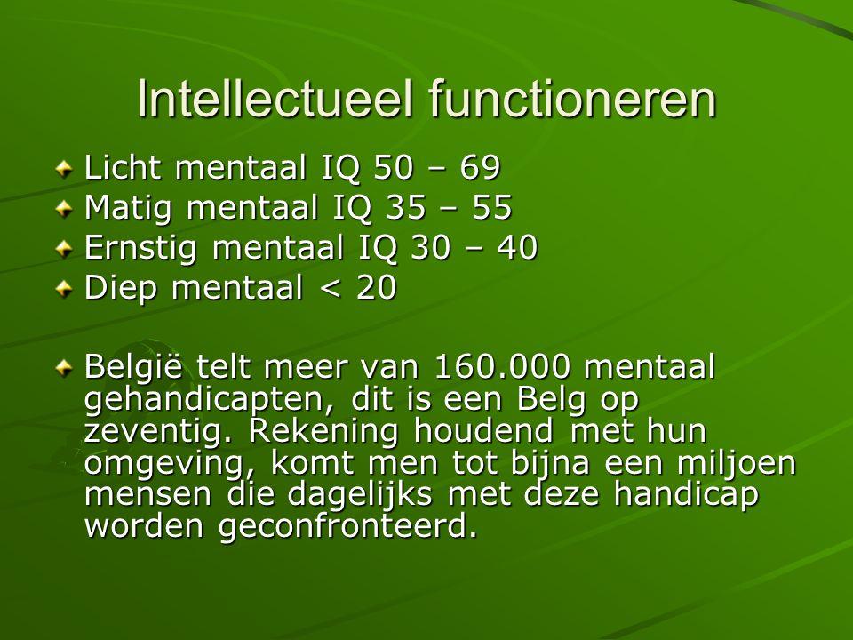 Intellectueel functioneren