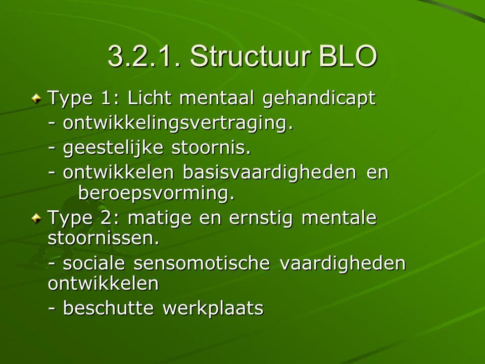3.2.1. Structuur BLO Type 1: Licht mentaal gehandicapt
