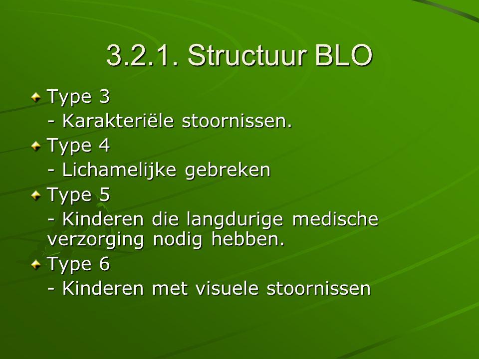 3.2.1. Structuur BLO Type 3 - Karakteriële stoornissen. Type 4