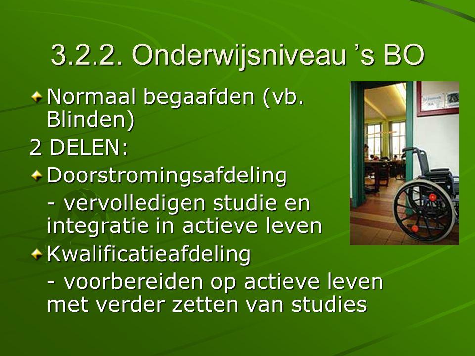 3.2.2. Onderwijsniveau 's BO Normaal begaafden (vb. Blinden) 2 DELEN: