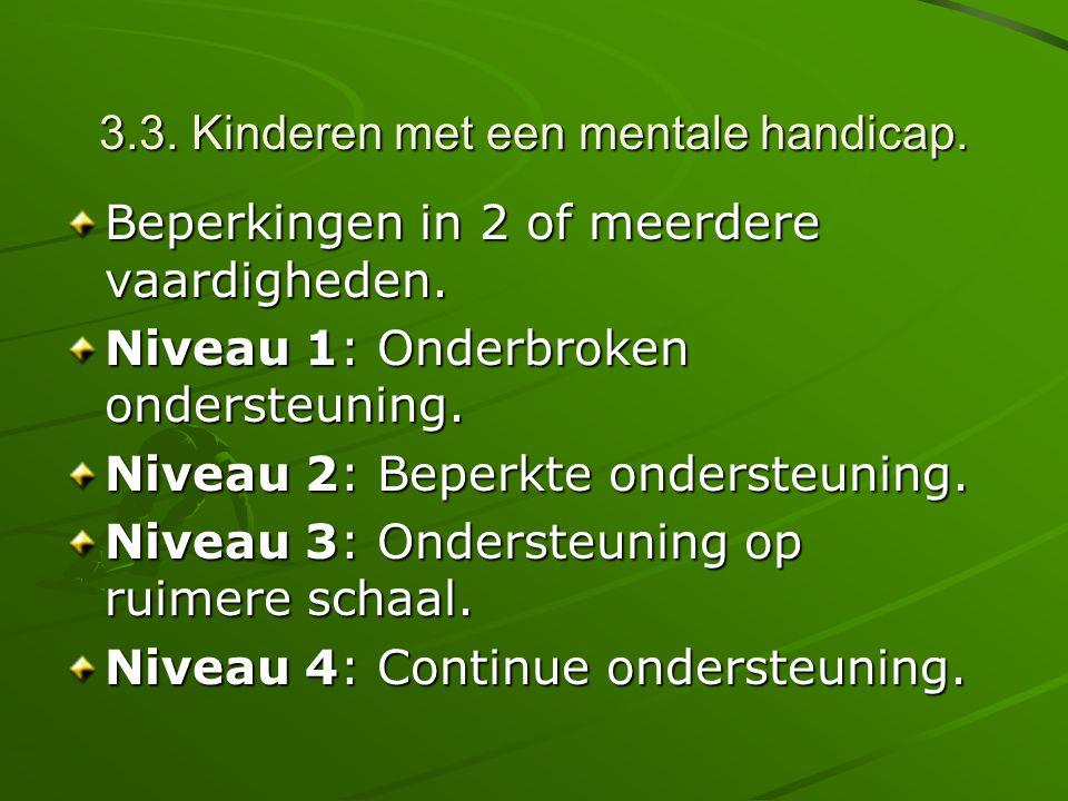 3.3. Kinderen met een mentale handicap.