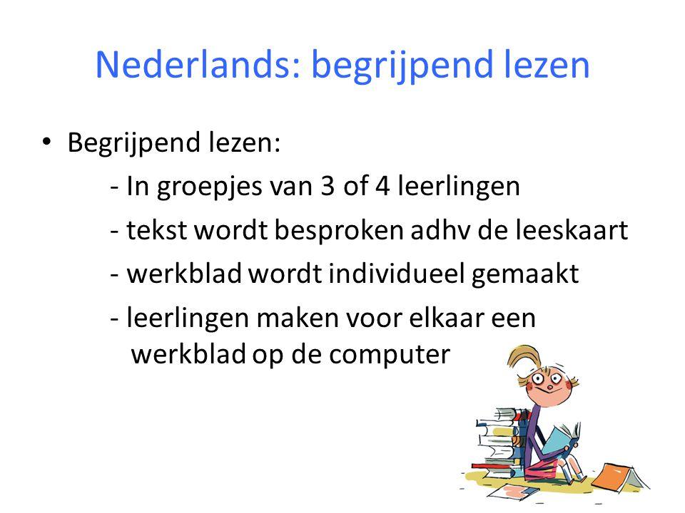 Nederlands: begrijpend lezen