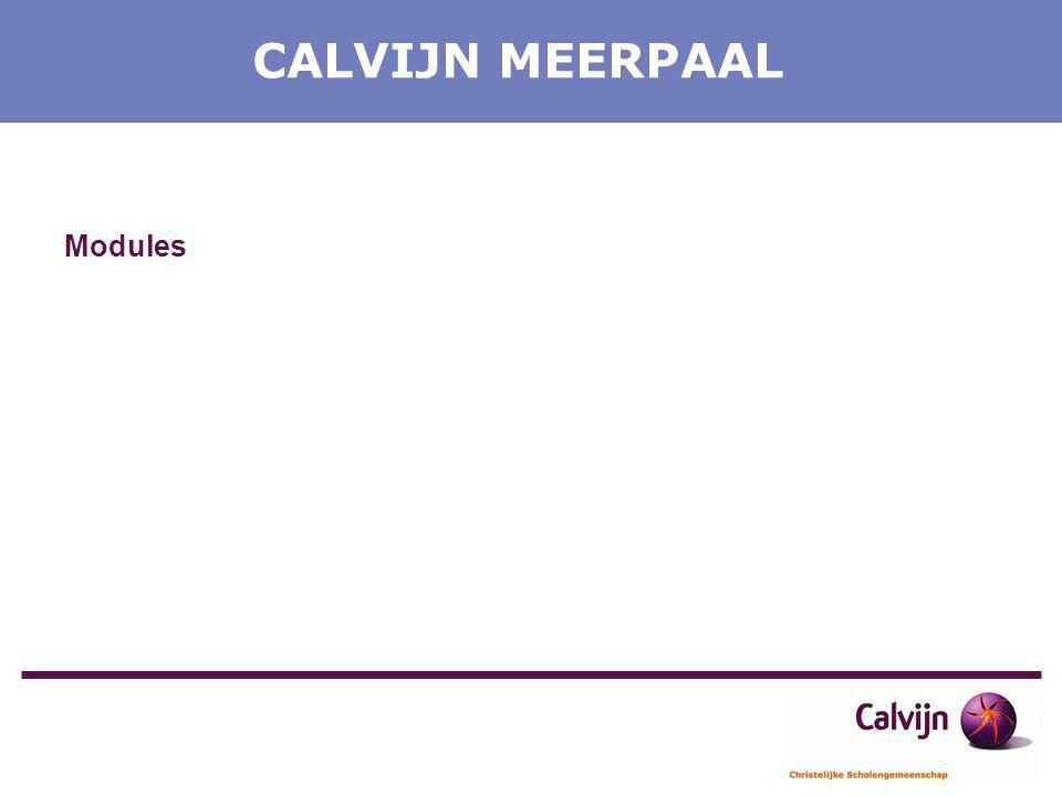 CALVIJN MEERPAAL Modules