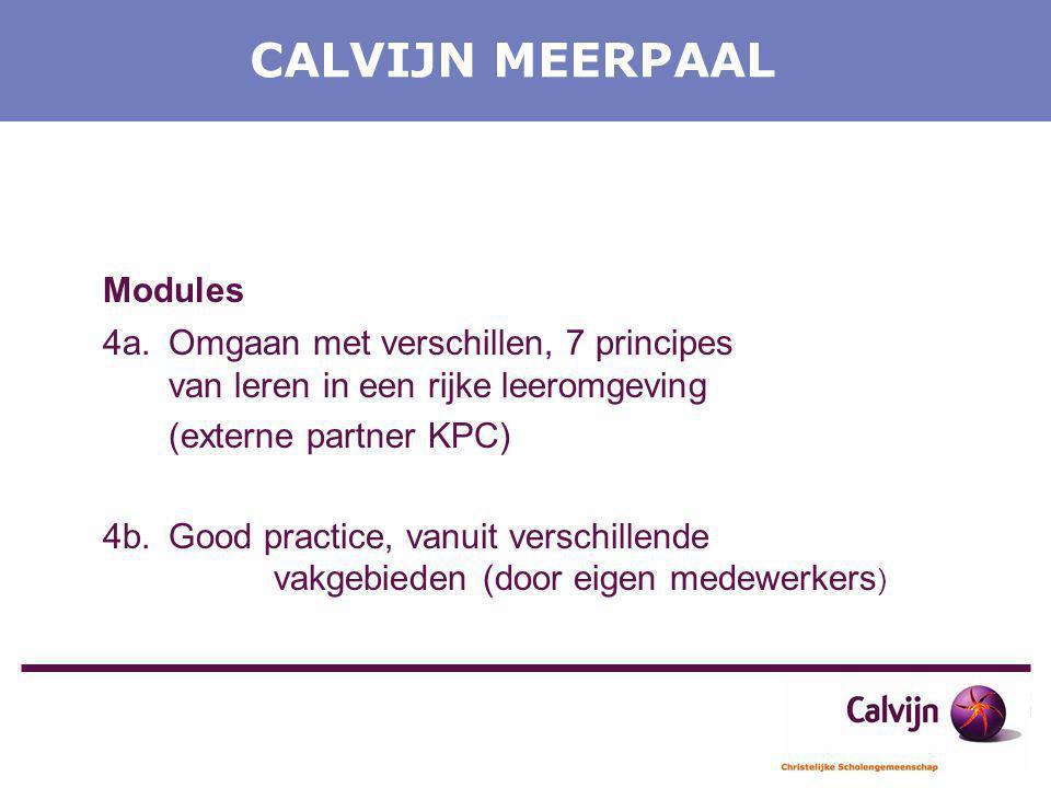CALVIJN MEERPAAL Modules