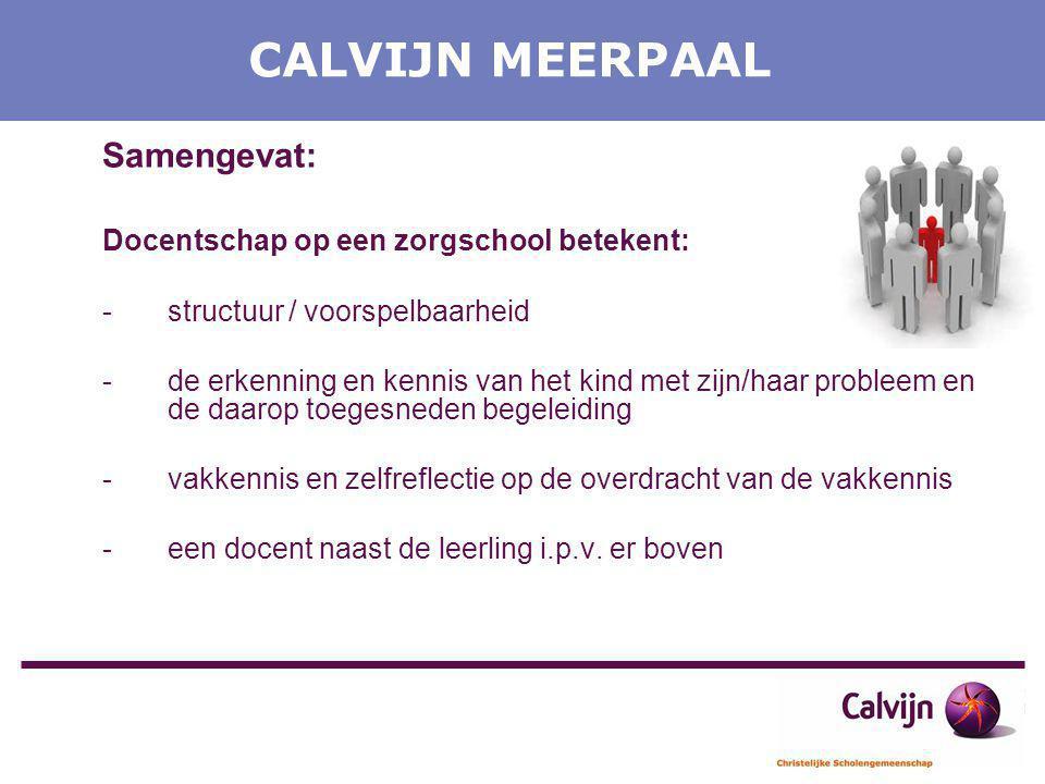 CALVIJN MEERPAAL Samengevat: Docentschap op een zorgschool betekent:
