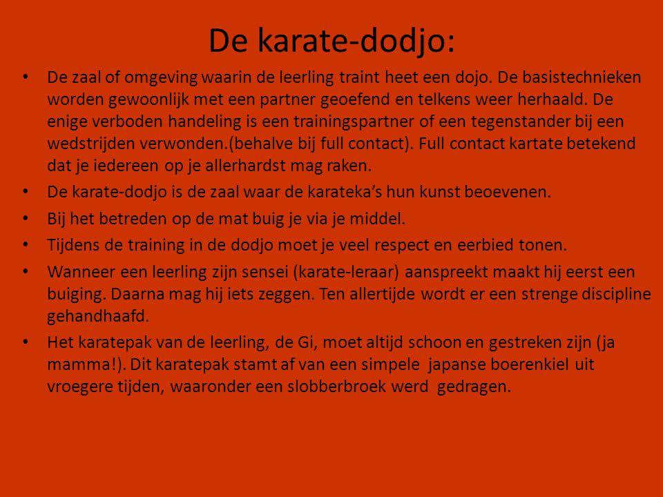 De karate-dodjo: