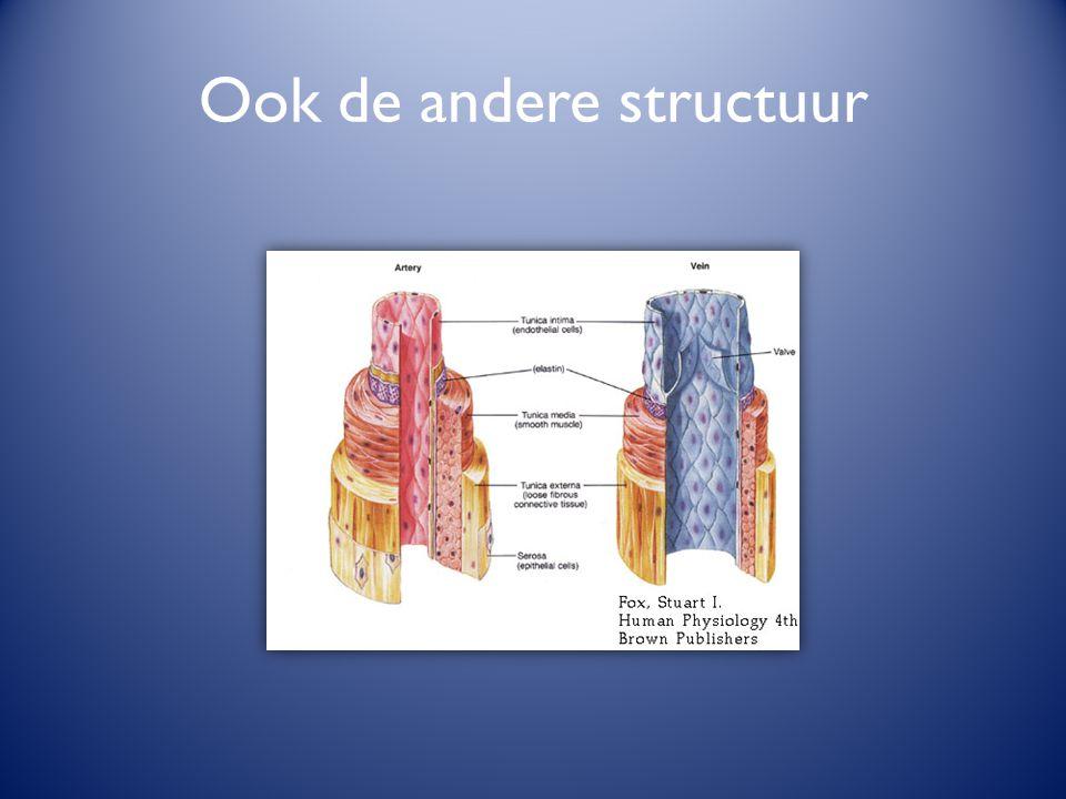 Ook de andere structuur