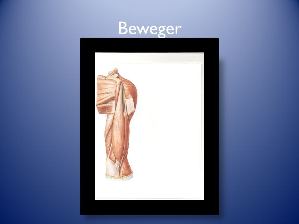 Beweger