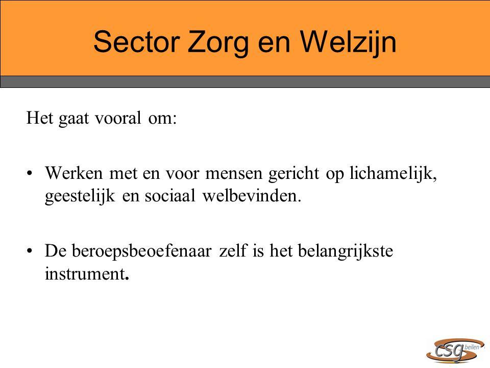 Sector Zorg en Welzijn Het gaat vooral om: