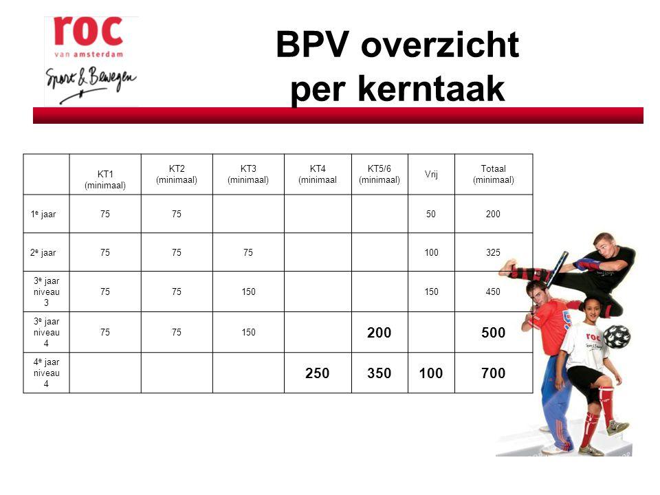 BPV overzicht per kerntaak